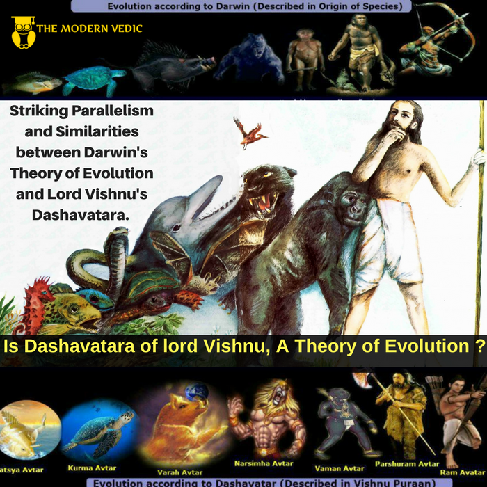 a comparison between the idea of creationism and the theories of evolution The trail of frankenchicken we can illustrate the differences between evolution and creationism by having them answer: what came firstthe chicken or the egg.